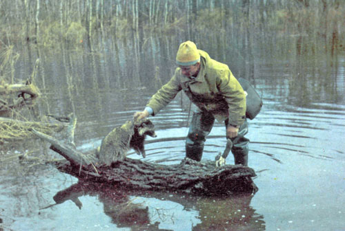 Сохраним животный мир нашей планеты