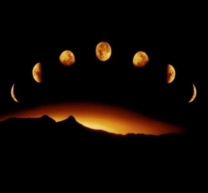 Сориентироваться и посадить рассаду или саженцы в нужное время поможет лунный посевной календарь