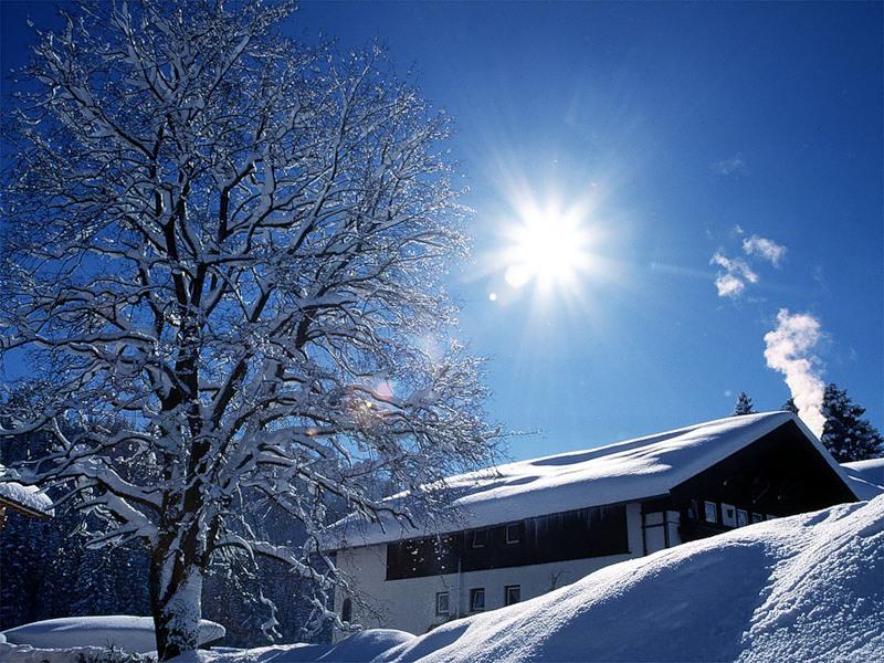 Зима на пороге