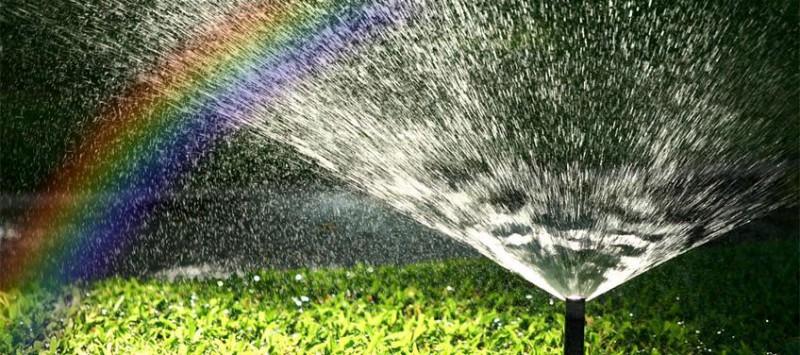 Автоматический полив в Вашем саду